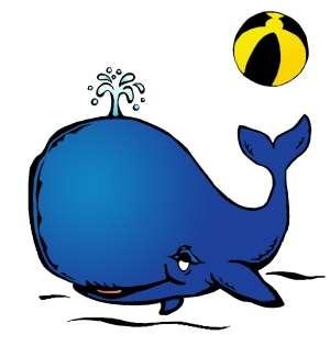 CPE La Baleine bricoleuse